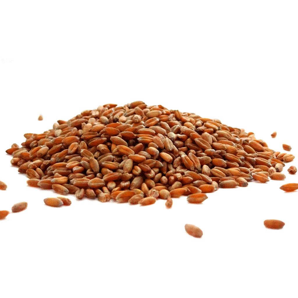 hard grain